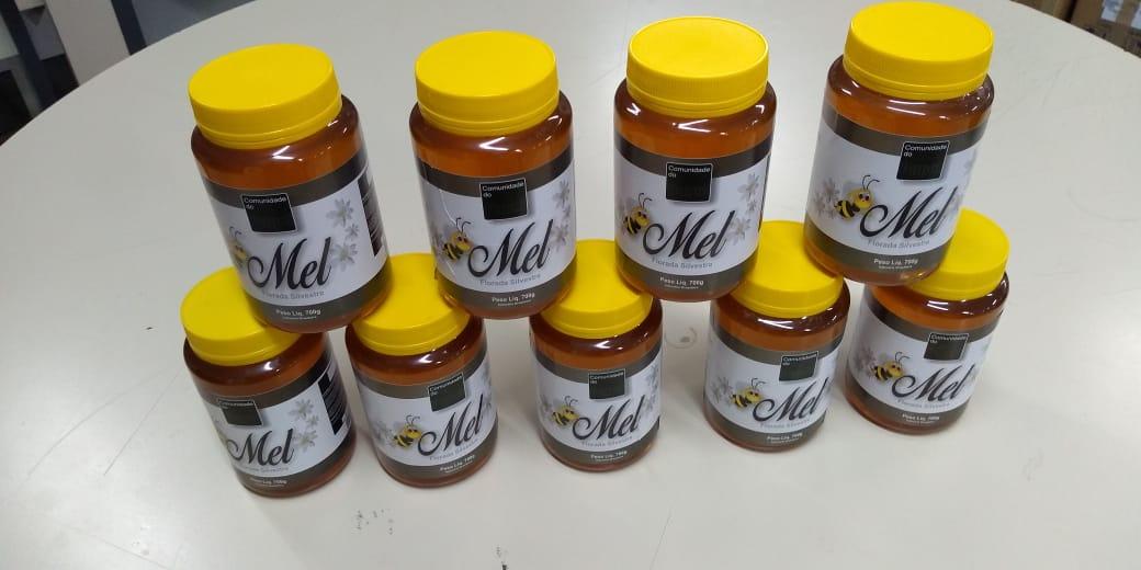 Ex-vítimas de escravidão voluntária, novos apicultores comemoram 1ª colheita de mel