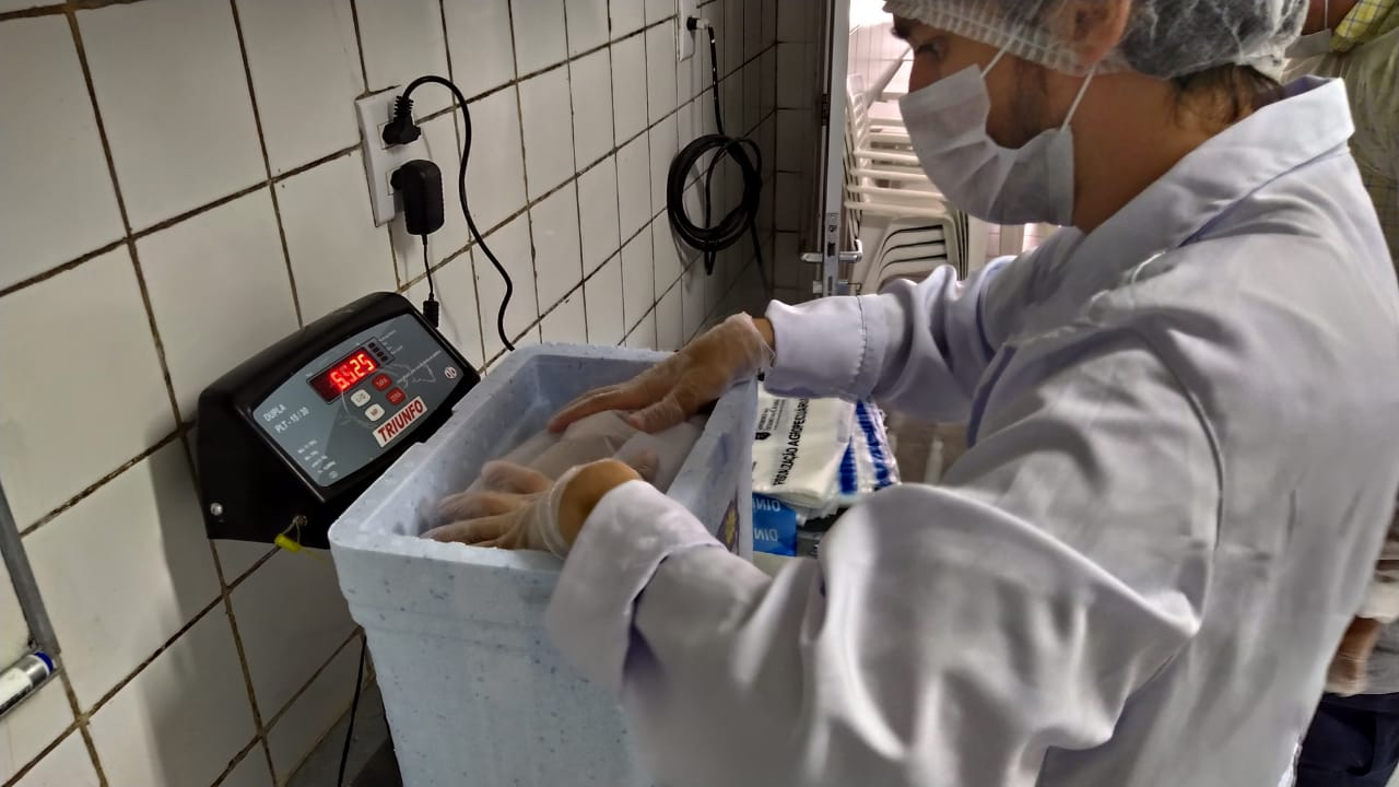 Contaminação por óleo: Nutec realiza análises de pescados comercializados no Ceará